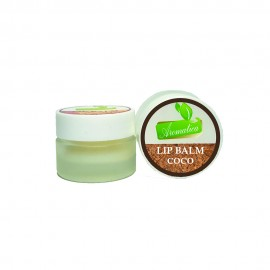 Baume à Lèvres - Coco - 5 Gr