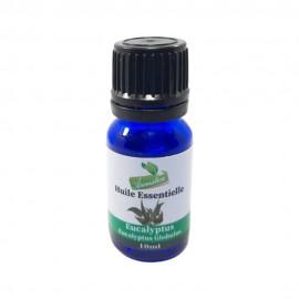 Huile essentielle - Eucalyptus - 10 ML